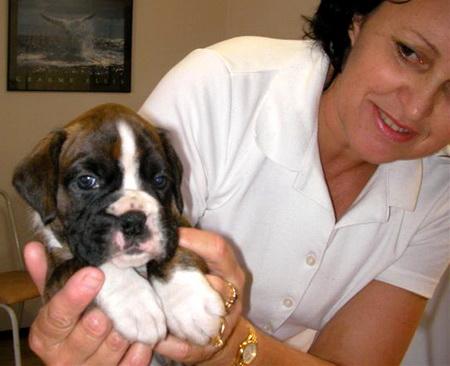 puppy-lucas024.jpg